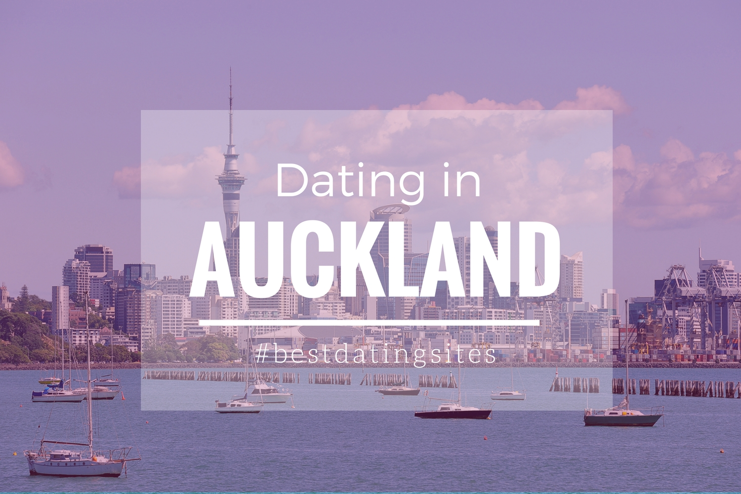 Free dating auckland dropbox not updating on ipad