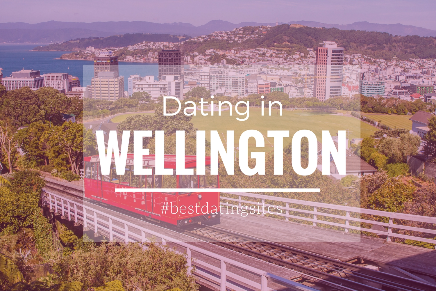 Speed-Dating-Events wellington